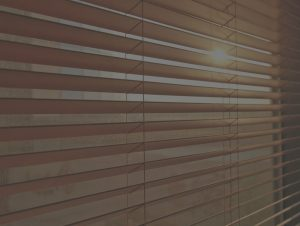 Shutter Blinds Bournemouth